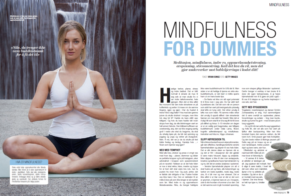 Mindfullness for dummies