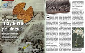Noen av Vigdis' artikler blir til og med publisert på flere språk.